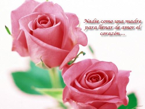 Frases para madres rosas
