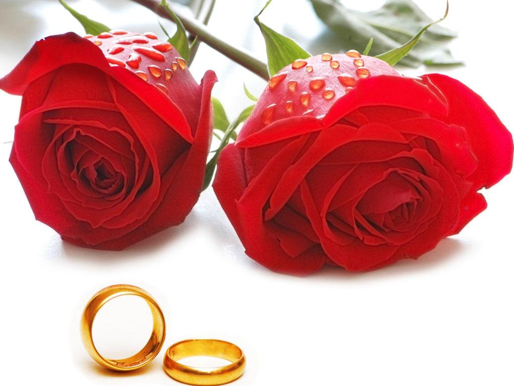 Imagenes de rosas matrimonio