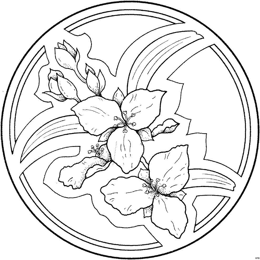 Imagenes para dibujar mandala